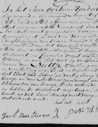 1817-08-08 - Geboorteakte Neeltje van Vuren